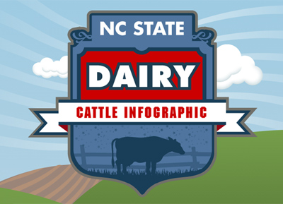 NCSU ANS231 Dairy Cattle Infographic